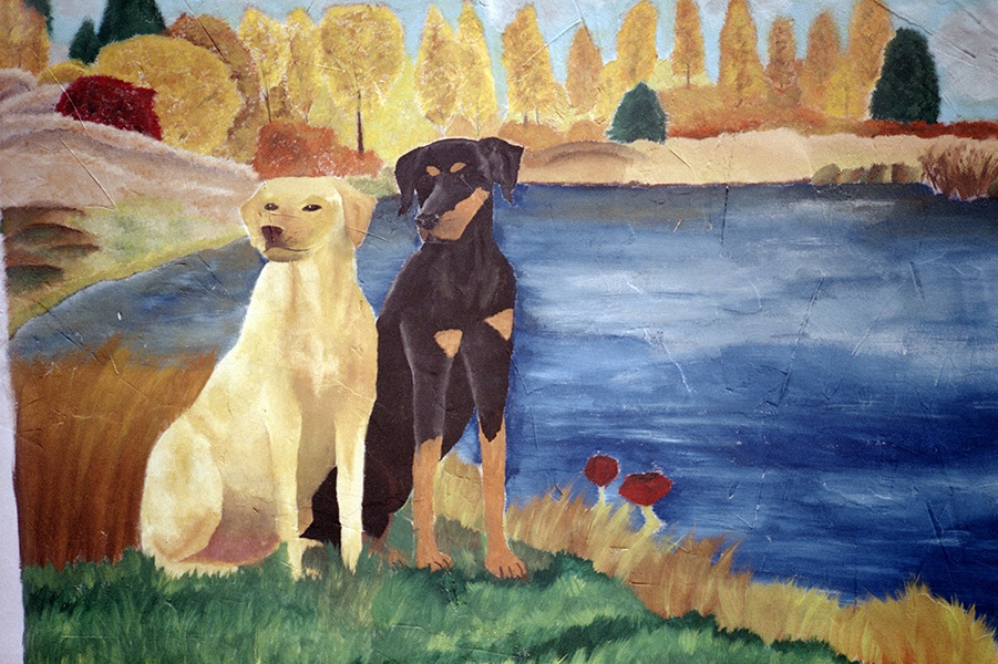 http://florianthein.de/files/gimgs/th-25_two-dogs-near-the-lake_22690450479_o.jpg